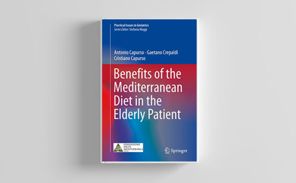 Benefits of the Mediterranean Diet in the Elderly Patient (Practical Issues in Geriatrics) (English Edition) Kindle Version